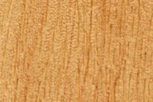 Holz e960